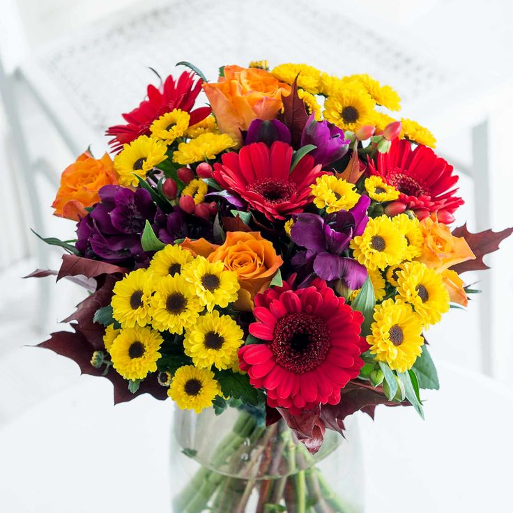 Vibrant Autumn: What a stunning display of vibrant seasonal blooms! A gorgeous collection of textures and colours, we're certain this bouquet will bring a pop of autumnal colour to any occasion.