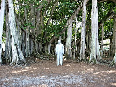 Under the banyan trees at @Edison & Ford Winter Estates ...