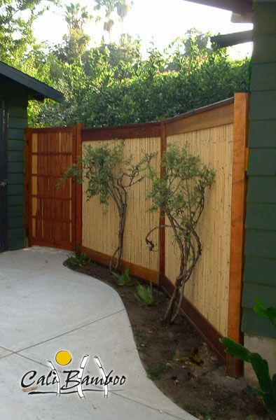 25 best bamboo fencing ideas on pinterest bamboo for Bamboo ideas for backyard