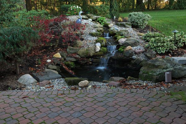 Images of ponds with waterfalls with pond pond water for Pictures of ponds with waterfalls