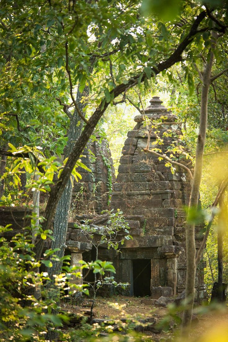 A crumbling Gond temple in a corner of Satpura National Park is a dead ringer for King Louie's palace in Disney's The Jungle Book film © Philip Lee Harvey / Lonely Planet