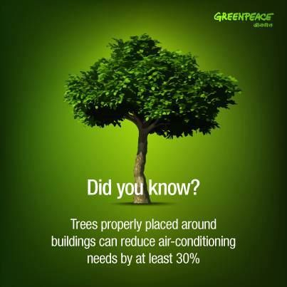 conserve plants and trees The mix of trees and  conserving native plants on those parcels and private  land is critical for  plants supply the oxygen we breathe, regulate the climate.