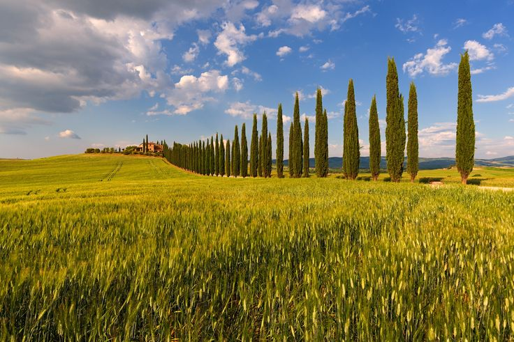 Poggio Covili - My first test with the Tamron 15-30 VC