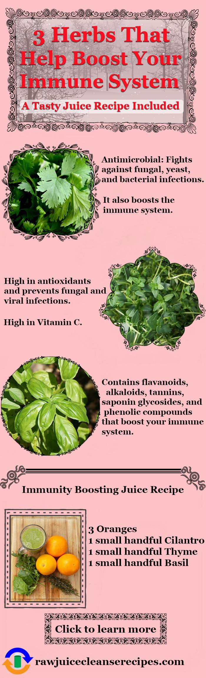 3 Herbs That Help Boost Your Immune System: A powerful herbal immunity boosting juice recipe included. It tastes so good, too!