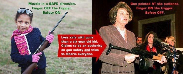 gun control humor feinstein idiot liberals suck
