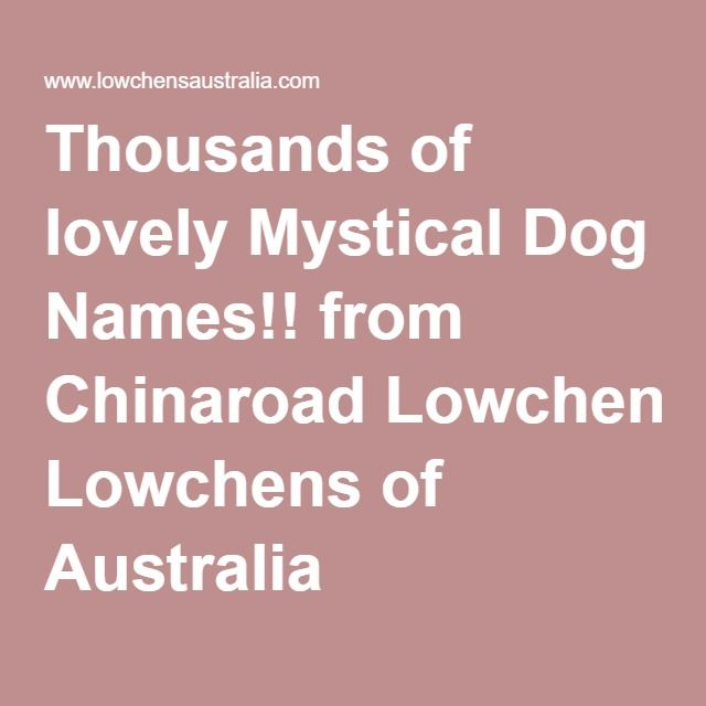Thousands of lovely Mystical Dog Names!! from Chinaroad Lowchens of Australia