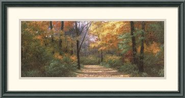 Autumn Road Panel Framed Print by Diane Romanello - traditional - prints and posters - Amanti Art