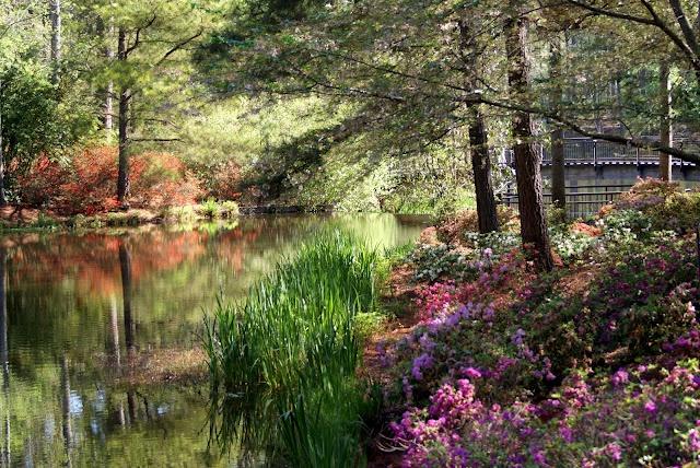17 best images about callaway gardens on pinterest - Callaway gardens pine mountain georgia ...