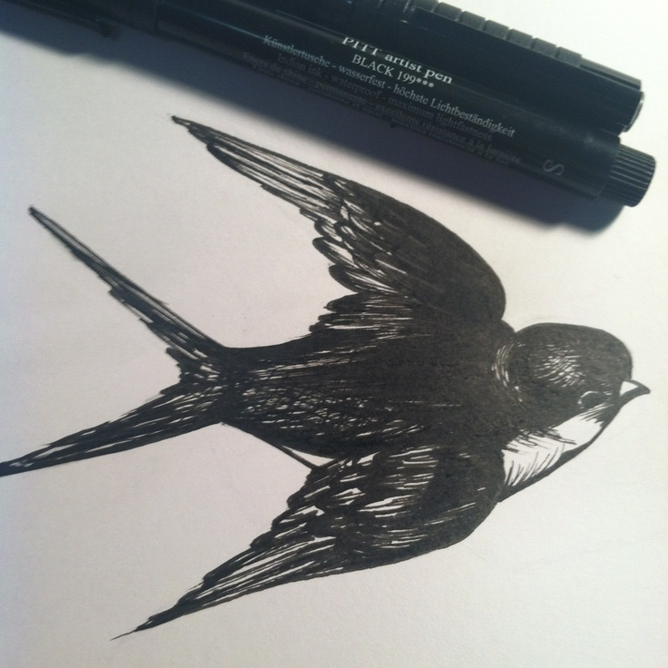 Sparrow pen drawing | Tattoo ideas | Pinterest | Drawing