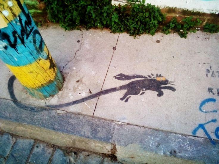 Grafiti in valparaiso , streetart, painting, art, flying cat
