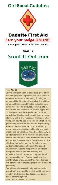 1000 images about girl scouting on pinterest girl