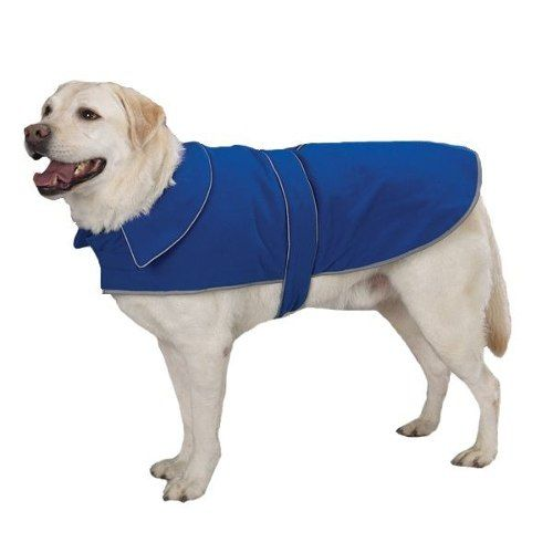Modelagem Moldes Roupas Para Cães Caes Cachorro 36 Modelos