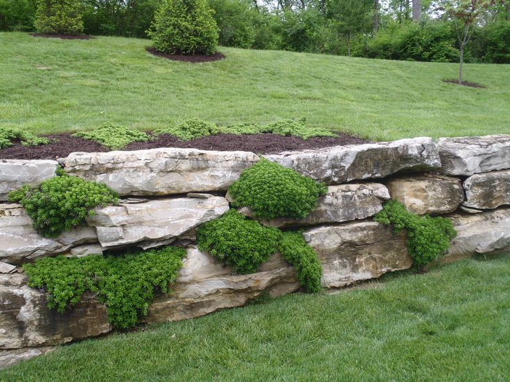 boulder meets timber retaining wall - Google Search