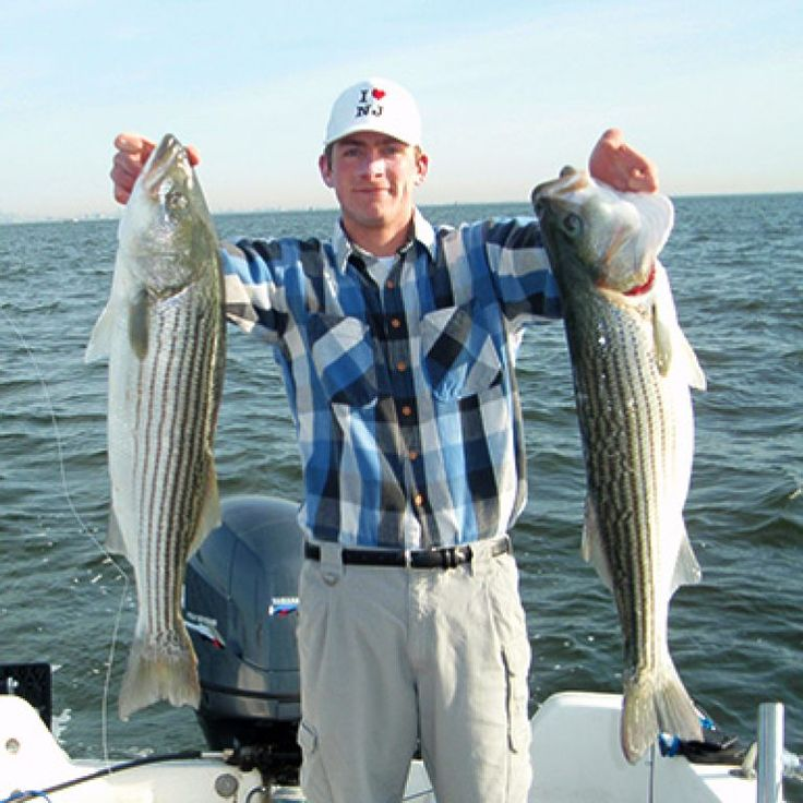 7 best striped bass lures in 2019 fishing guide by