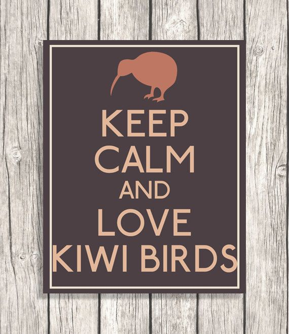Keep Calm And Love Kiwi Birds  Keep Calm by PatiHomeDecor on Etsy, $6.00
