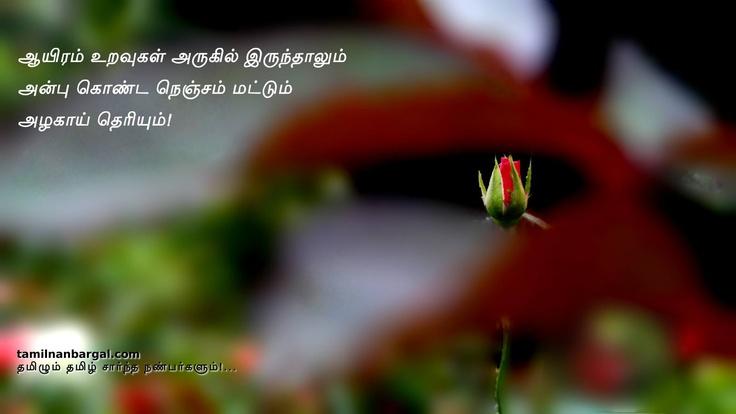 ஆயிரம் உறவுகள் அருகில் இருந்தாலும்  அன்பு கொண்ட நெஞ்சம் மட்டும் அழகாய் தெரியும்! http://tamilnanbargal.com/