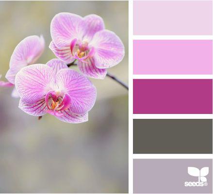 orchid tones: Color Palettes, Orchidtones 1, Design Seeds, Orchid Tones, Colors, Purple Color