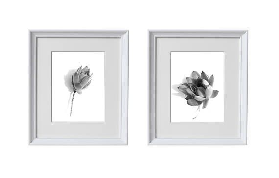 Black and white set of 2 prints. Two different flower heads of a succulent plant with roots are placed on white background. These prints in coastal style will remind you of sun and nature. Minimalist Poster Design, Succulent Plant Printables, Succulent Set of 2 Prints, Poster With Succulent