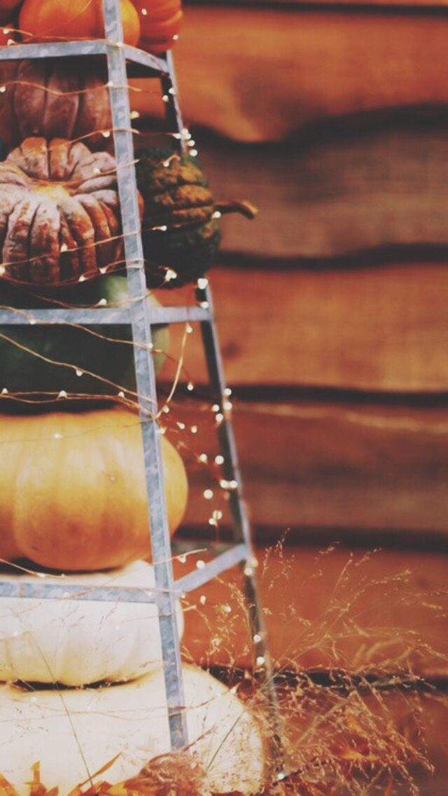 Fall / Halloween phone wallpapers