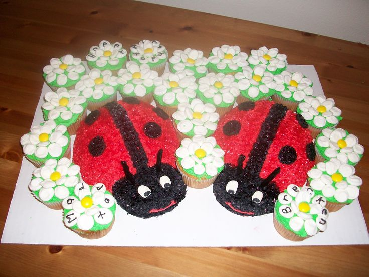 Lady Bug Cake with marshmallow daisy cupcakes    I so love this!!!