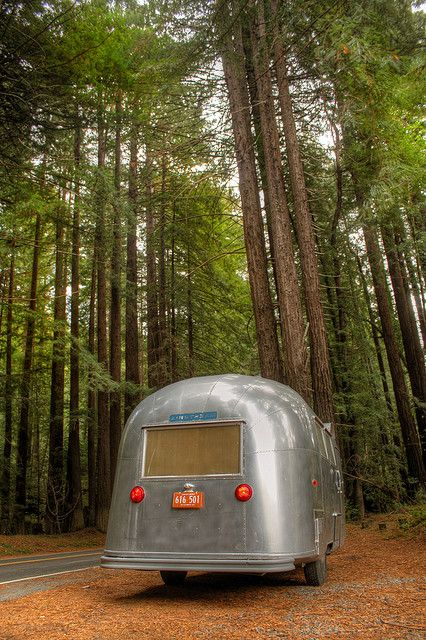 1000 Images About Bambi Airstream On Pinterest Vintage