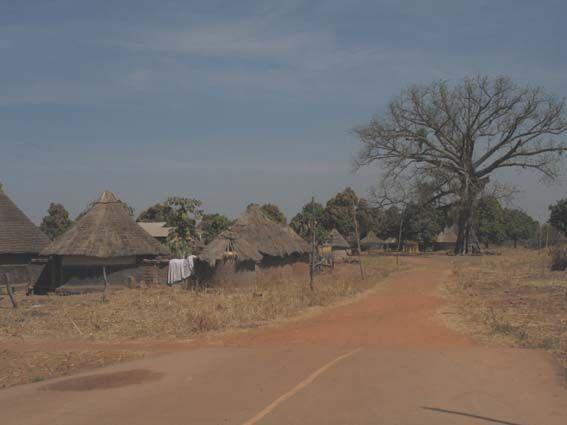 Guinea Conakry.