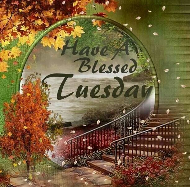 54 best images about Tuesday Blessings on Pinterest   God