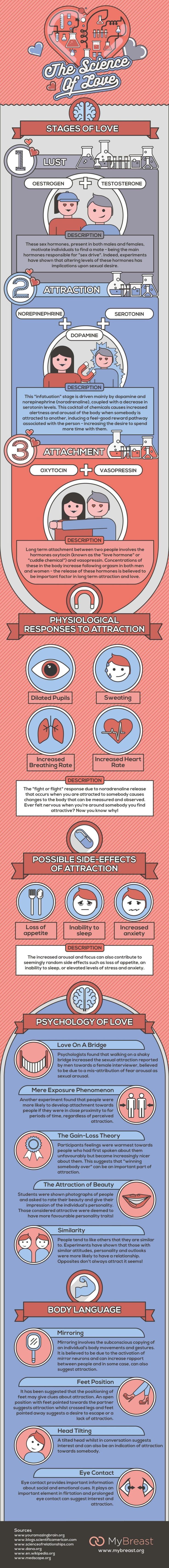 The science of love #Infographic
