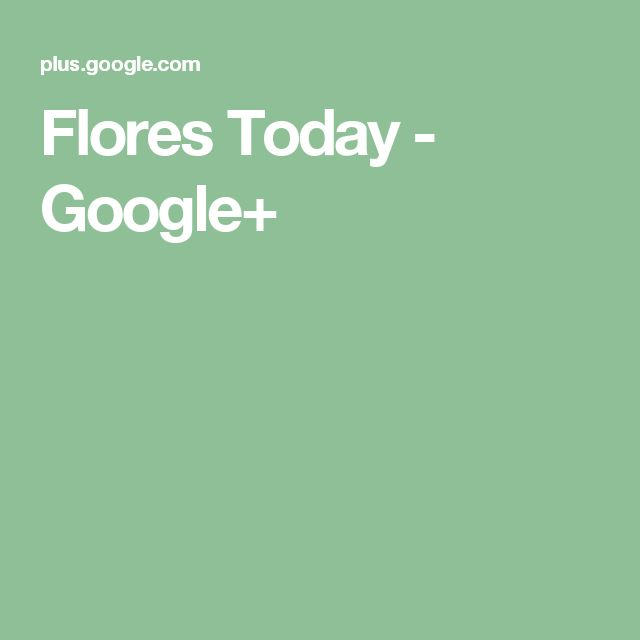 Flores Today - Google+