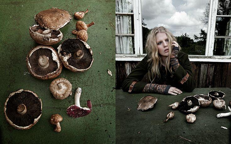 mushrooms published in elle, netherlands