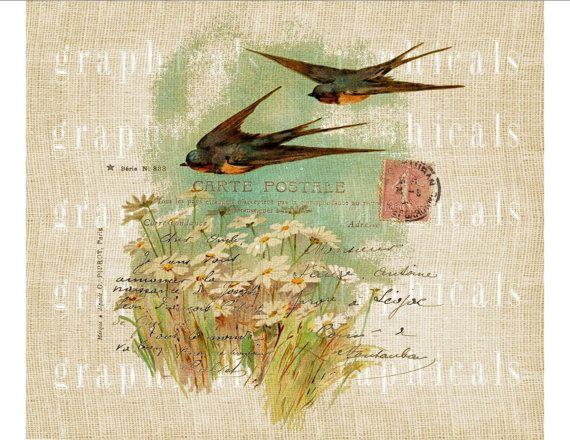 Avale des marguerites Carte Postale numérique instantanée téléchargement image graphique pour le fer sur transfert tissu toile de jute papier oreillers cartes n° 601