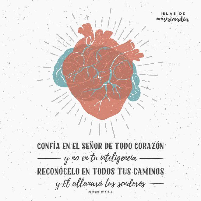 Confía en el Señor de todo corazón… (Proverbios 3, 5-6) – Islas de Misericordia