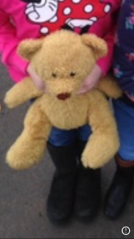 Lost on 12 Aug. 2016 @ Halesowen . Charlie bear is brown and had a very tatty nose and a West Bromwich Albion badge on his foot, he was lost somewhere between blackheath and Dudley, West Midlands. My daughter has had him since she w... Visit: https://whiteboomerang.com/lostteddy/msg/6ju212 (Posted by Sarah on 14 Aug. 2016)