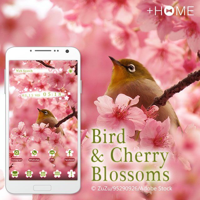 """Bird & Cherry Blossoms""   This theme featuring a bird in a cherry blossom tree is perfect for those of us who can't get enough of everything Japan!  Download Now:http://bit.ly/2mWvs1O  #cute #wallpaper #icon #girl #beautiful #plushome #homescreen #widget #deco"