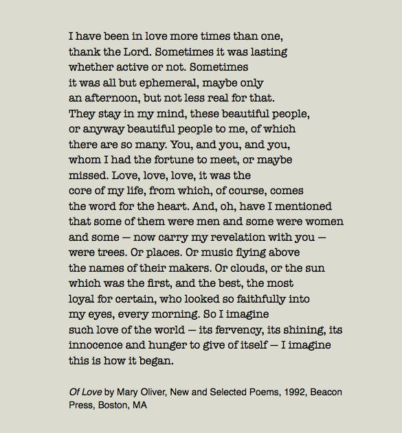 Mary Oliver Love Quotes: 17 Best Ideas About Mary Oliver On Pinterest