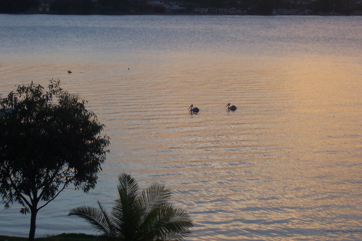 Fishing Point, NSW