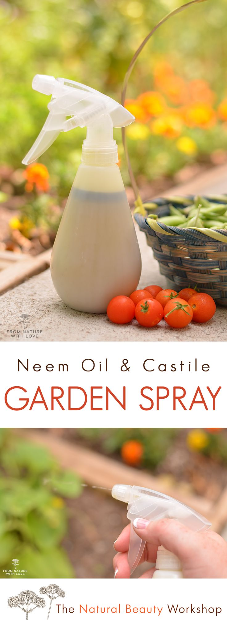 Make your own all natural garden spray with just four simple ingredients
