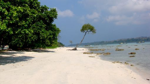 """#Havelock Island is also known as """"Heavenly-lock island"""" because of #picturesque  views and #amazing location.The #greenery, scenery and history of this place is #mesmerizing. The #Scuba Diving experience is #something totally out of the world, and needs to be #experienced by one and all. Therefore, it is #suggested to book the tickets and catch the next flight to Havelock island, #rather than wasting time in reading endless remarkable reviews about this place."""
