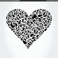 bird heart - Google-Suche
