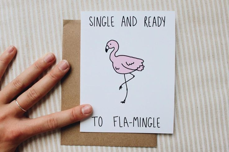 | SINGLE & READY TO FLAMINGLE | I don't give a flock what you say. #flamingo #flamingocard #funnycard #breakups #breakupcard