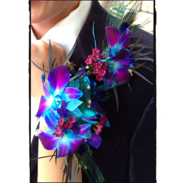 Blue Orchid Amp Peacock Feather Corsage Amp Boutonniere