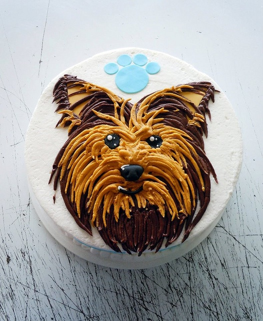 Yorkie Chocolate Birthday Cake
