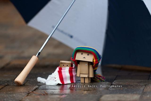 Cold and Rainy, via Flickr.
