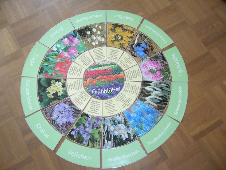 Ideenreise: Legekreis Frühblüher