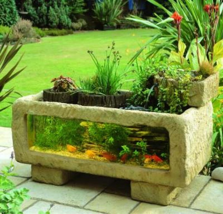 17 best images about goldfish ponds on pinterest the for Outdoor aquarium pond planter