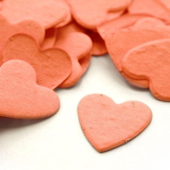 Heart Shaped Plantable Confetti in CoralPaper Rose, Plantable Confetti, Coral Heart, Paper Confetti, Seeds Confetti, Heart Shape, Coral Wedding, Plantable Seeds, Shape Plantable