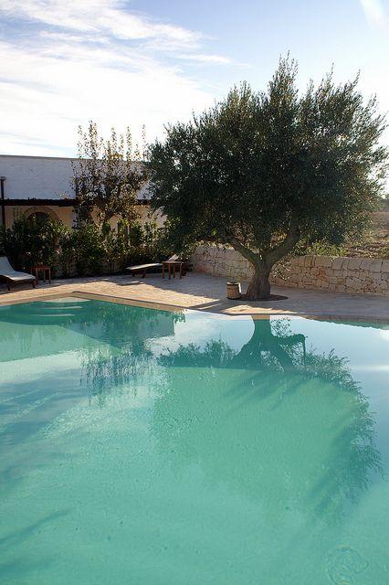 Pool Masseria Fumarola Puglia