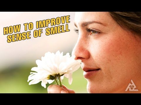 How To Improve Your Sense Of Smell | Best Health and Beauty Tips | Education