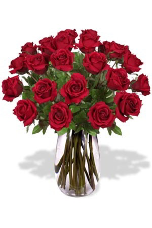 """24 Long Stem Premium Rose Bouquet    Roses signify passion and love. Red Roses are the absolute best way of saying"""" I love you"""". Show your special someone with this stunning bouquet of 24 amazing Roses. Roses have many meanings, but are best known for their message of love. Our Roses come in a range of different colours, so make sure that you specify what colour you want when ordering. $169.37"""