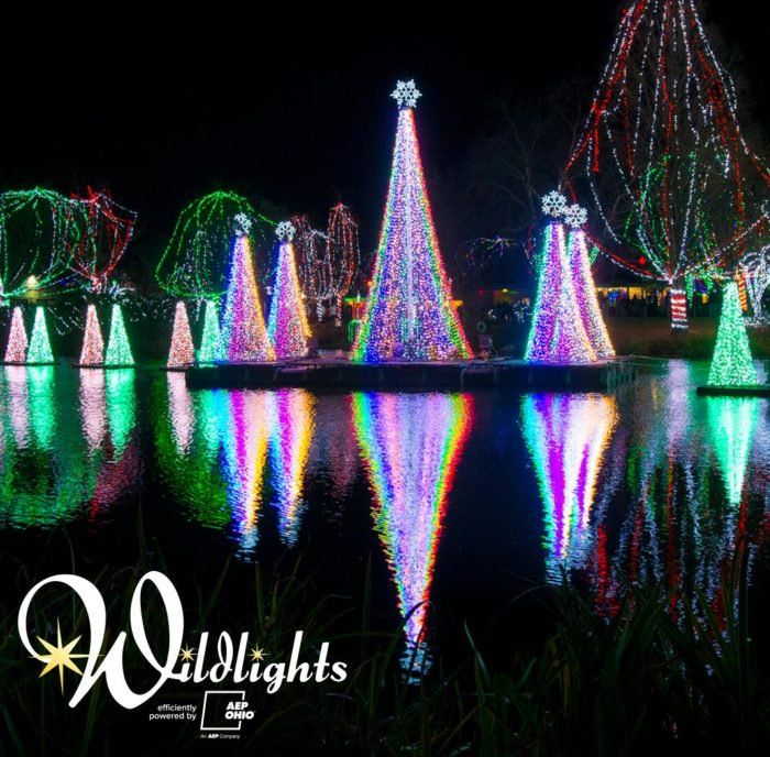 14 Magical Light Displays In Ohio That Will Simply Mesmerize You This Season Columbus Zoo Zoo Lights Columbus Ohio Zoo